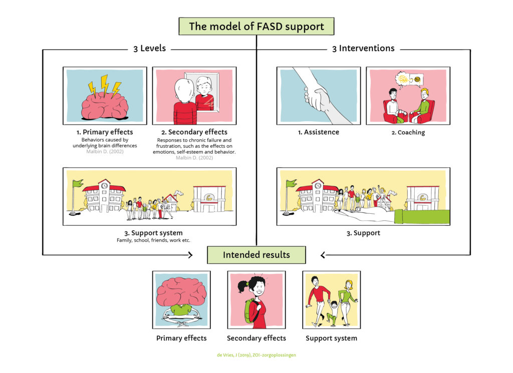 The model of FASD support. ZO!-zorgoplossingen.nl